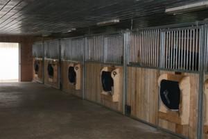 Our Facility Bayview Equestrian Centre